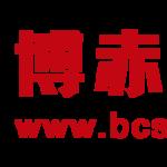 bcstarz的公司标识