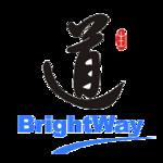 上海智生道翻译的公司标识