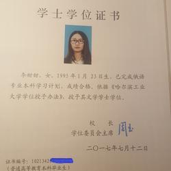 哈尔滨工业大学本科学位证