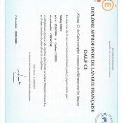 法国国民教育部法语高级文凭(DALF)C1级